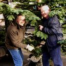 Stephen Morley, Remembrance Tree Committee Chair, and Liam Leonard, Wicklow Rotary Club President, erecting the tree in Church Street car park last weekend