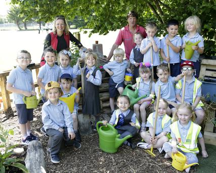 Ms Egan's Junior infant class at St Fergal's with their garden which took first place last year