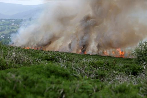 A gorse fire on Carrigoona Hill.