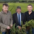 John Kavanagh and Teige Ryan of None-So-Hardy Forestry with Minister of State Andrew Doyle.