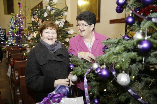 Breda Murphy and Maureen O'Toole with the Purple House tree