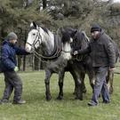 Lesley Hambridge from Donard with Stephen Paine and Edward Allen leading his horses Fred and Roxie