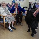 St Colman's residents Kay Ward, Rosalie Dumbleton and Doreen Mulhall with Jet