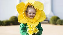 Little 'Dell' daffodil bud Robyn Coleman (3) at the launch of Daffodil Day 2015