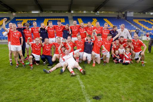 The Glenealy senior hurling team who defeated Bray Emmets in the SHC decider in Joule Park, Aughrim.