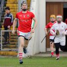 Glenealy captain Danny Staunton leads his troops out for the Leinster final in Nowlan Park. Photo: Dave Barretts