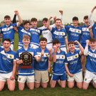 The Coláiste Bhríde Carnew hurlers who defeated Wexford CBS to claim the Top Oil South Leinster Schools Junior hurling 'C' championship