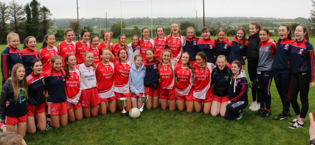 Both Tinahely squads pose for photos after the 'A' side clinched the crown by defeating a brave Blessington side