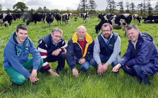 At the Teagasc organised Fodder and Financial Planning Event on the farm of Peter and Margaret Duggan, Killeenleigh, Kanturk were from left, Peter O'Driscoll, farm apprtentice; James Lyons, Teagasc Kanturk; Peter Duggan; Pat Barry, Teagasc Kanturk and Gerard Courtney, Teagasc Heavy Soils Programme. Photo by Patrick Casey