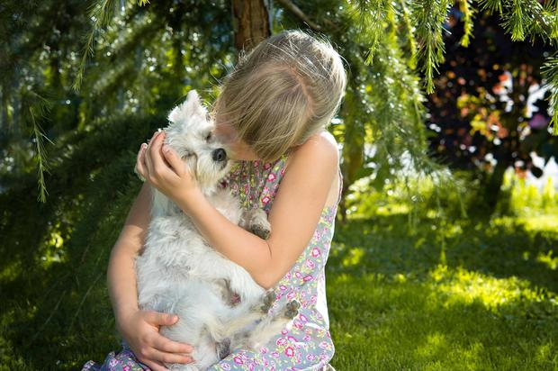 Children often don't realise when dogs are uncomfortable