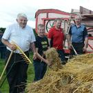 A good day's harvest at the Cullen Vintage Day for Pat O'Keeffe, John Murphy, Diarmuid Murphy and Pat Hallahan. Picture: John Tarrant