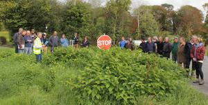 Dr Fran Igoe explaining the invasive species of plant which has hit Duhallow