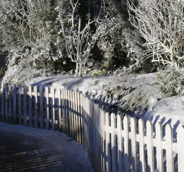 Winter Wonderland at The Farm in Grenagh, will open on Saturday November 30