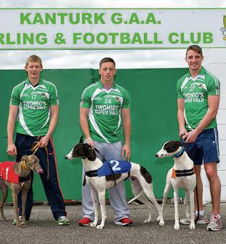 Cork players Lorcan McLoughlin, Antony Nash and Aidan Walsh getting dogs ready for the Kanturk GAA Night at the dogs on August 22. Photo: Janusz Trzesicki.