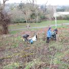 Tree planting event in the Castle grounds in Macroom last weekend, in recognition of National Tree Week.
