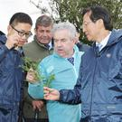The Chinese Minister for Agriculture and Rural Affairs, Mr Han Changfu (right) checking out the quality grass on the Murphy family farm during his visit to Boherbue
