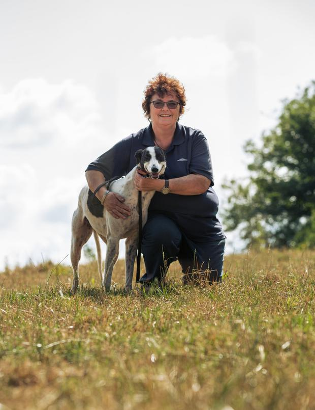 Bridget Murphy from Ovens will receive an award for her work with retired greyhounds