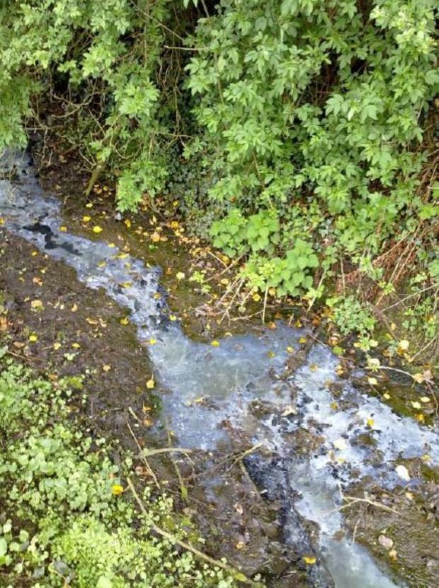 Raw sewage from an overflowing septic tank on open ground