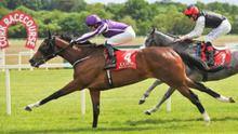 Action is set to return to Cork Racecourse, Mallow on Sunday, July 5.