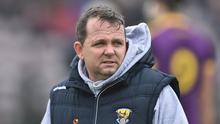 Wexford hurling manager Davy Fitzgerald