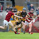 Eoin Clancy, Fermoy, Paul O'Sullivan and Eoin O'Sullivan, Cloyne in the County PIHC Photo Jim Coughlan
