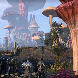 While Elder Scrolls Online has improved with Morrowind's release, it still isn't enough of a jump to warrant a resounding commendation