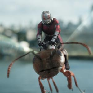 Paul Rudd as Scott Lang/Ant-Man riding the wasp in Ant-Man And The Wasp