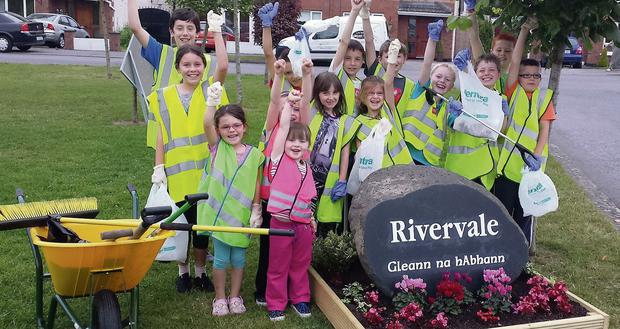 Rivervale Junior Litter Wardens Dunleer