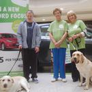 Ronan O'Callaghan with his dog Nanna, Mitch the Assistance dog, Margaret Dagg and Betty Kelly