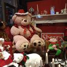 Prizes are on offer for the best Christmas displays