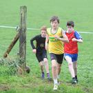 Calum Sheedy, Boyne AC, Tiernan Reilly, Dunleer and Aidan O'Hare, 3 Ways taking part in the Kearney and McBride races held at Bush