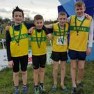 The Boyne Under-14 silver medal winning team of Aaron Fennell, Paddy Price, Neil Culhane and Danny Nugent.
