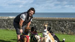 David Cloak (Cloaky) campaigner for a dog park out walking Indie (border collie rottweiler) her sister Dakota (border collie whippet), Marie (cavalier hornet), Olaf (akita whippet) and Alfie (boxer) at Harbour Park, Rush.