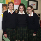 Katie Codd, Aoife Mernagh and Rachel Fortune at the 'I Am Worth It' event in Coláiste Bríde, Enniscorthy