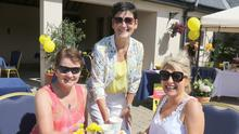 Aoife McCarty, Olga Morris and Dee Greenwood at the Coffee Morning, in aid of Irish Cancer Society and The Daffodil Night Nurses at Coroo House, Coolnahorna