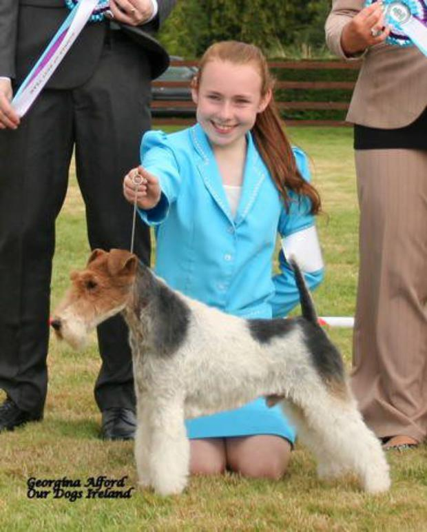 ge dog handler catherine 1