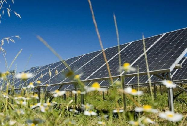 Typical example of a solar farm. Stock image.