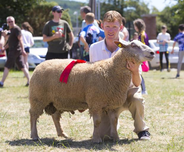 Brendan Fitzpatrick from Ballywilliam with the winner of the charollais ram lamb class