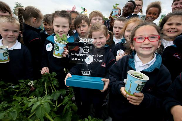 Pictured are the Big Grow competition winning pupils from Andrew Foley's class at St Aidan's Primary School in Enniscorthy: Conor Larkin, Emily Daly, Alteo Pecaku, Phoebe Redmond, Salsabil Ramadan, Ruairí Cullen Keane, Joshua Flynn, Lucy Stafford, Rhys Greig, Tegan Quinn, Angelina McCarthy, and Aleksandra Mitrollari