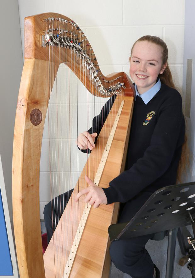 Megan Morahan playing the harp at the open day
