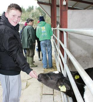 Pictured at Agri Aware's Farm Walk and Talk at Ballyhaise Agricultural College is Conor Lawlor (16), a student in Colaiste Choilm CBS, Swords, Dublin.