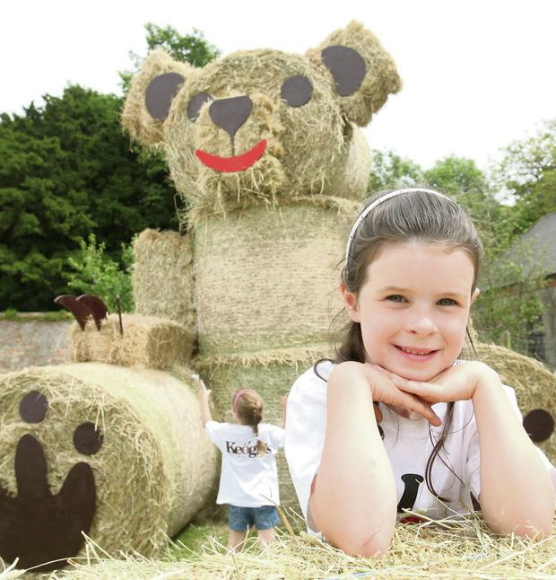 Lucy Corbally from Oldtown with Keogh's big bear at the Flavours of Fingal show.