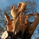 The tree sculpture in St Annes Park that inspired Maurice's idea