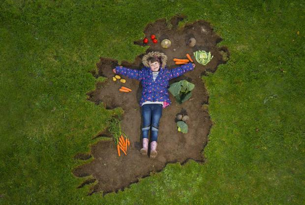 Energia is encouraging people in Fingal to grow their own