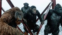 War For The Planet Of The Apes, Film 4, Wednesday
