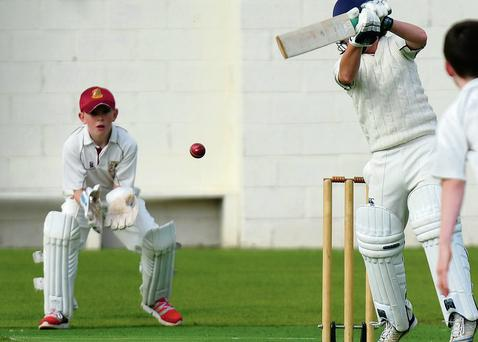 Rush U-11s wicketkeeper Nathan McGuire keeps his eyes on the ball during last week's All-Ireland semi-final. Pictures: Fintan Clarke