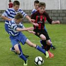 Action from one of Malahide United's matches in the Peninsula Cup on the Cooley Peninsula.