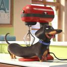 The Secret Life Of Pets imagines what our four-legged, feathered and finned friends get up to when our backs are turned