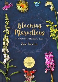 Front cover of Zoë Devlin's new book