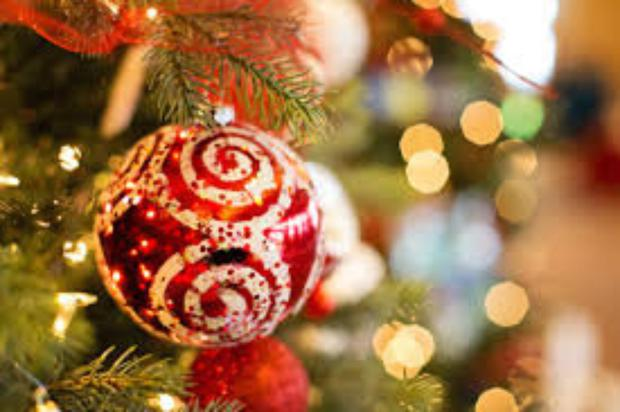 Christmas Is Not For Everyone Independent Ie